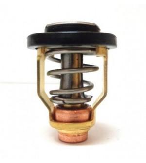 thermostat 9.9 / 250cv
