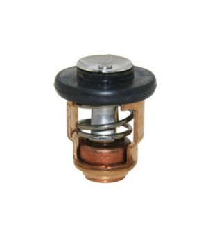 thermostat pour yamaha