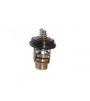 thermostat pour moteur mercury 2 à 6 cv 4 temps
